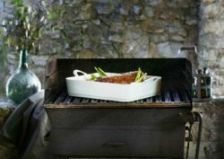 Pillivuyt Ulysses grill& stove top series